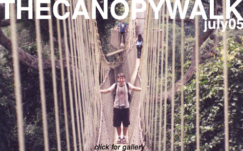 Canopy Walk in the Kakum National Forest